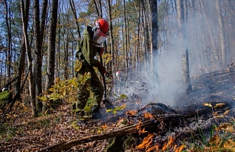 Fire Envelopes Kuban Forests