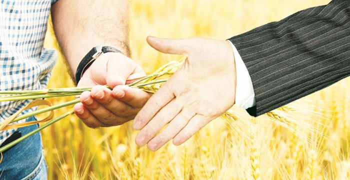 A Helping Hand for Farmers