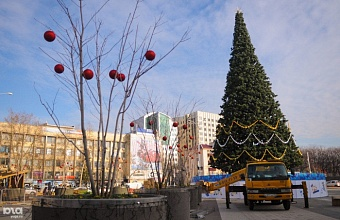 Krasnodar Welcomes Main New Year Tree