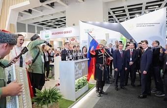 Делегация Кубани участвовала в открытии российской экспозиции на «Зеленой неделе» в Берлине