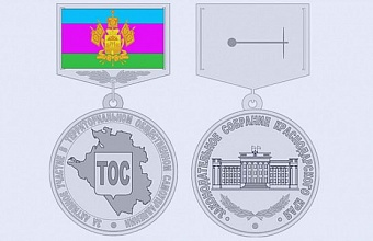В ЗСК рассмотрят вопрос об учреждении награды активистам ТОС