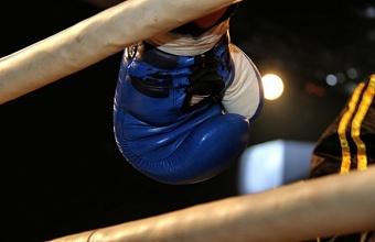 В Краснодаре встретятся лучшие боксеры страны