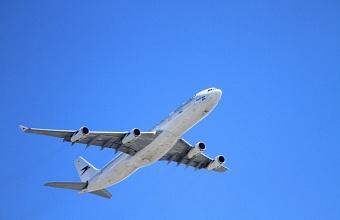 В аэропорту Сочи задержали пассажирку за нарушение общественного порядка