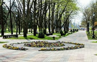 Жители Краснодарского края выбрали 65 зеленых зон для благоустройства в 2021 году