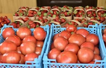 Кубанским фермерам помогут со сбытом продукции