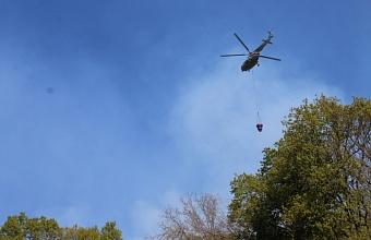 На Кубани локализовали два действующих лесных пожара