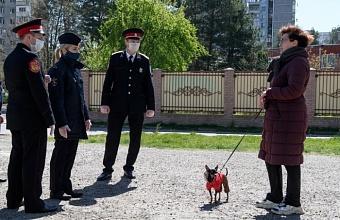 В Краснодаре мобильные группы патрулируют 99 пешеходных маршрутов