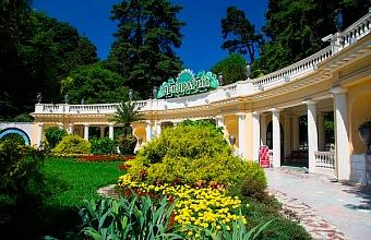 Сочинский «Дендрарий» проведет онлайн-экскурсии по парку