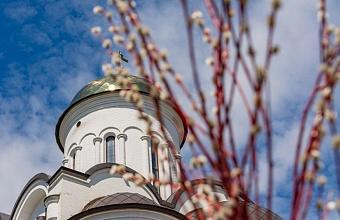 На Кубани храмы проведут онлайн-трансляции богослужений в Вербное воскресенье