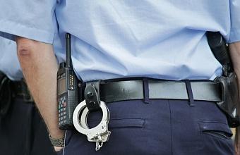 Жителя Новокубанского района осудили на 6 месяцев за наезд на полицейского