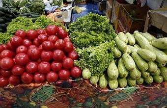 На рынках Кубани расположено более 18% торговых мест