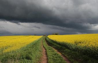 Ливни с грозами и сильным ветром прогнозируют на Кубани