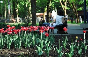 В Красноармейском районе благоустроят два парка