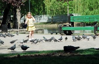 Парки и набережные на Кубани откроют для посещения