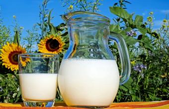 Кубань - лидер в РФ по приросту производства молока в первом квартале года