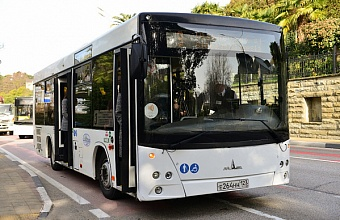 В Сочи появятся новые автобусные маршруты