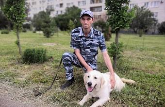 Служебная собака помогла раскрыть кражу в Белореченском районе