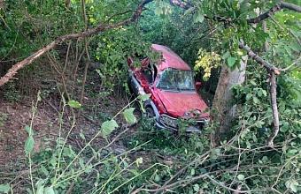 В Краснодаре иномарка врезалась в дерево, водитель погиб