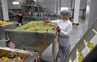 Экспорт кондитерских изделий на Кубани вырос в 4 раза за 5 лет