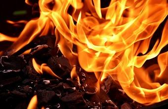 Под Геленджиком загорелась лесная подстилка на площади 300 кв. м