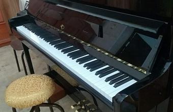 Музыкальные инструменты получила детская школа искусств Тихорецкого района