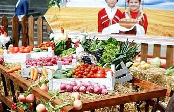 Конференция по развитию агротуризма в России состоится в онлайн-формате