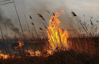 На Кубани сохраняется экстренное предупреждение о пожароопасности
