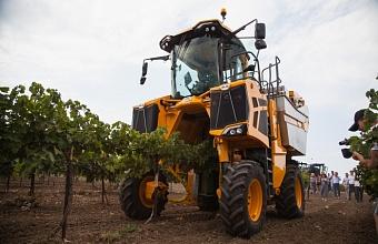 В Краснодаре обсудили промежуточные итоги исследования винодельческой отрасли Кубани