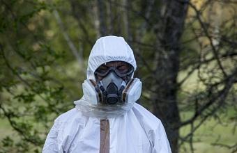 Предприниматель закапывал химические отходы в землю в водоохранной зоне в Сочи