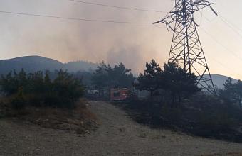 В Новороссийске произошел пожар в лесничестве на площади 4 га