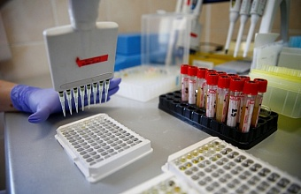 Число заболевших коронавирусом на Кубани достигло 9 642 человека