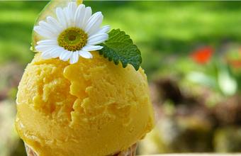 Кубань с начала года экспортировала 250 тонн мороженого