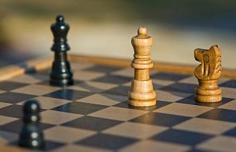 Городской онлайн-турнир по шахматам проведут в Краснодаре