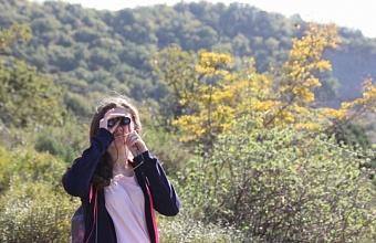 Слет юных экологов и школьных лесничеств пройдет в Анапе