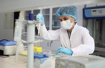В Краснодарском крае COVID-19 подтвержден еще у 95 пациентов