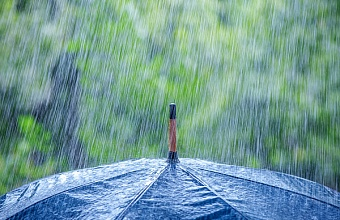 Сильный дождь с грозой ожидается в Сочи