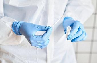 На Кубани 21 октября выявили 121 случай коронавируса