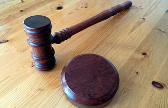 В Краснодаре троих мужчин осудили за контрабанду осетровой икры