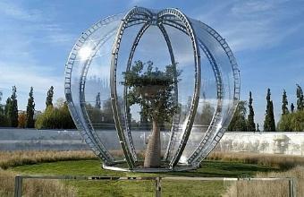 Деревья в парке «Краснодар» утеплили для защиты от холода