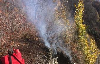 Из-за выстрела рекетницы в Кавказском заповеднике произошел лесной пожар