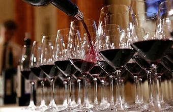 В Новороссийске построили новый завод по переработке винограда