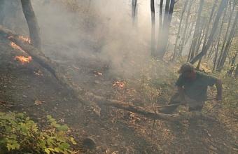 В Туапсинском районе загорелась лесная подстилка на площади 6,2 га