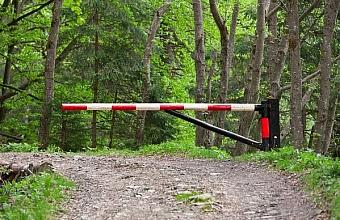 В Сочи запретили посещать лес из-за высокой пожароопасности