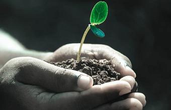 На Кубани примут дополнительные меры по защите черноземов