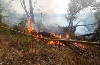 В Сочи дважды за день загоралась трава рядом с трассой газопровода