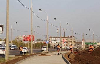 На аллею по ул. им. Петра Метальникова пересадят 362 липы с ул. Московской в Краснодаре