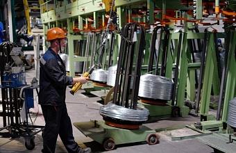 Кубань стала одним из первых регионов, подключившимся к нацпроекту «Производительность труда и поддержка занятости»
