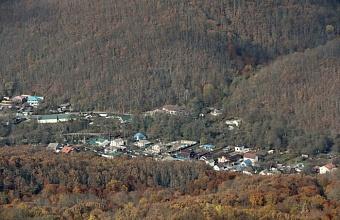 Застройку лесного фонда в Крымском районе проверят по поручению главы региона