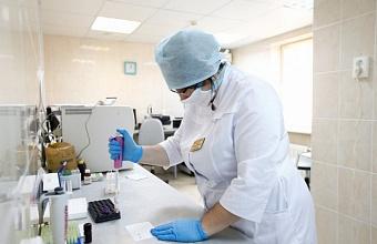 За сутки в Краснодарском крае диагностировали 178 случаев COVID-19