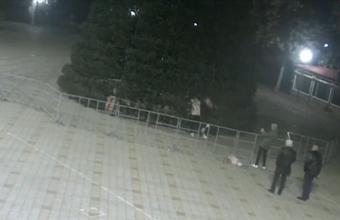 В Анапе разыскивают вандалов, повредивших городскую елку